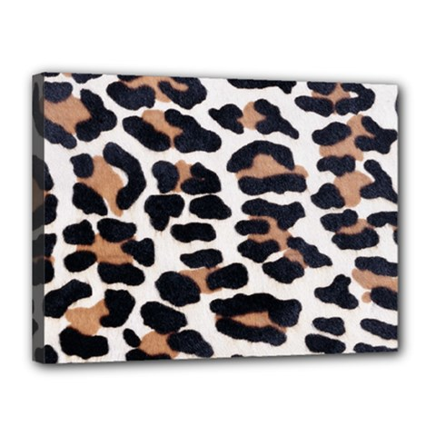 Black And Brown Leopard Canvas 16  X 12  by trendistuff