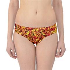 Orange Yellow  Saw Chips Hipster Bikini Bottoms by Costasonlineshop