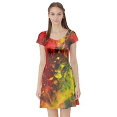 WILD Short Sleeve Skater Dresses by timelessartoncanvas