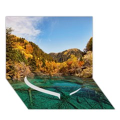 Jiuzhaigou Valley 1 Heart Bottom 3d Greeting Card (7x5)  by trendistuff