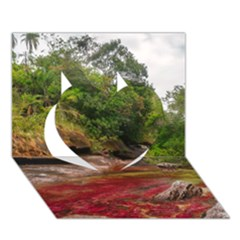 Cano Cristales 1 Heart 3d Greeting Card (7x5)  by trendistuff