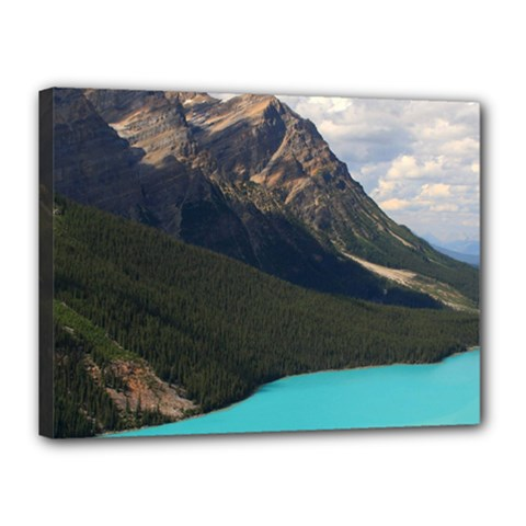 Banff National Park 3 Canvas 16  X 12  by trendistuff