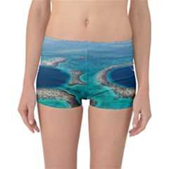 GREAT BLUE HOLE 1 Reversible Boyleg Bikini Bottoms by trendistuff