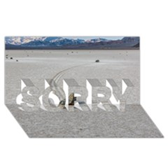 Sailing Stones Sorry 3d Greeting Card (8x4)  by trendistuff