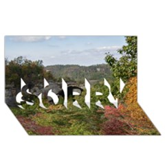 Natural Arch Sorry 3d Greeting Card (8x4)  by trendistuff
