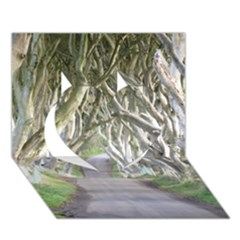 Dark Hedges, Ireland Heart 3d Greeting Card (7x5)  by trendistuff