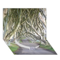Dark Hedges, Ireland Circle Bottom 3d Greeting Card (7x5)  by trendistuff