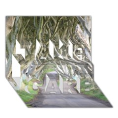 Dark Hedges, Ireland Take Care 3d Greeting Card (7x5)  by trendistuff