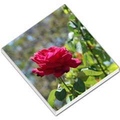 Red Rose 1 Small Memo Pads by trendistuff