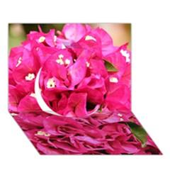 Bougainvillea Circle 3d Greeting Card (7x5)  by trendistuff