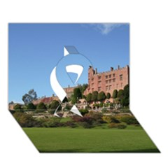 Powis Castle Terraces Ribbon 3d Greeting Card (7x5)  by trendistuff