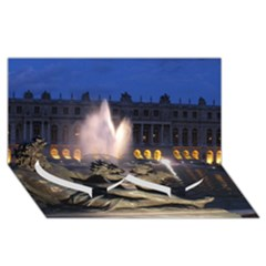 Palace Of Versailles 2 Twin Heart Bottom 3d Greeting Card (8x4)  by trendistuff