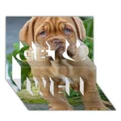 Cute Wrinkly Puppy Get Well 3d Greeting Card (7x5)  by trendistuff