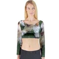 CUTE CAVAPOO PUPPY Long Sleeve Crop Top by trendistuff