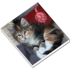 Comfy Kitty Small Memo Pads by trendistuff