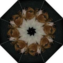 Adorable Baby Puppies Straight Umbrellas by trendistuff