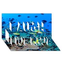 Fr Frigate Shoals Laugh Live Love 3d Greeting Card (8x4)  by trendistuff