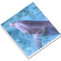 Dolphin 2 Small Memo Pads by trendistuff