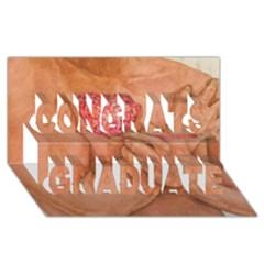 Embrace Love  Congrats Graduate 3d Greeting Card (8x4)  by KentChua