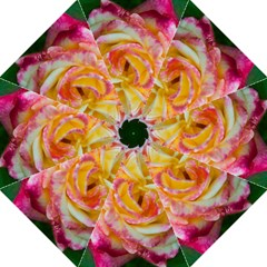 Pink & Yellow Rose Golf Umbrella by Whitewaveswimzie