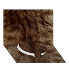 Silber Tiger Fur Circle Bottom 3d Greeting Card (7x5)  by timelessartoncanvas