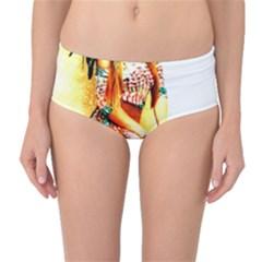 Indian 16 Mid Waist Bikini Bottoms by indianwarrior