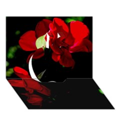 Roses 4 Apple 3d Greeting Card (7x5)  by timelessartoncanvas