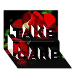 Roses 4 Take Care 3d Greeting Card (7x5)  by timelessartoncanvas