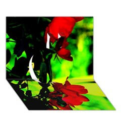 Red Roses And Bright Green 1 Apple 3d Greeting Card (7x5)  by timelessartoncanvas