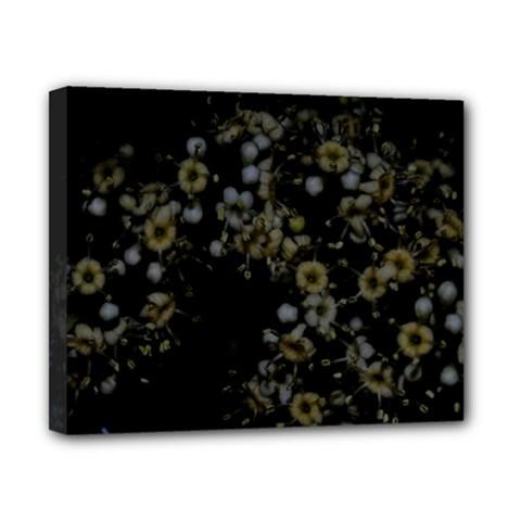 Little White Flowers 3 Canvas 10  X 8  by timelessartoncanvas