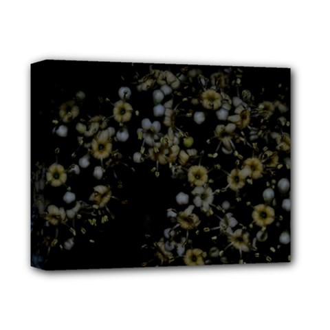 Little White Flowers 3 Deluxe Canvas 14  X 11  by timelessartoncanvas