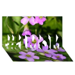 Little Purple Flowers #1 Mom 3d Greeting Cards (8x4)  by timelessartoncanvas