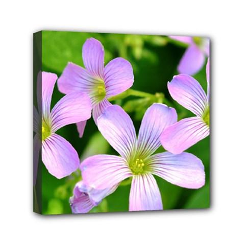 Little Purple Flowers 2 Mini Canvas 6  x 6  by timelessartoncanvas
