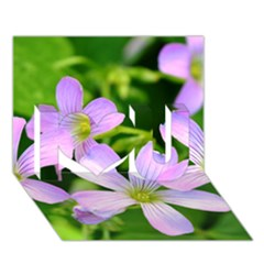 Little Purple Flowers 2 I Love You 3d Greeting Card (7x5)  by timelessartoncanvas