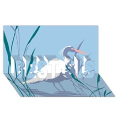Egret Best Sis 3d Greeting Card (8x4)  by WaltCurleeArt