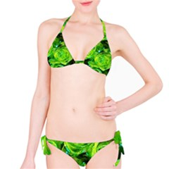 Festive Green Glitter Roses Valentine Love  Bikini Set by yoursparklingshop