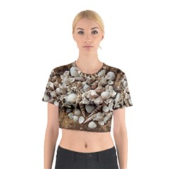Tropical Sea Shells Collection, Copper Background Cotton Crop Top by yoursparklingshop