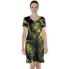 Amazing Fractal 24 Short Sleeve Nightdress by Fractalworld