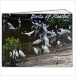 Saniibel 3A1 - 11 x 8.5 Photo Book(20 pages)