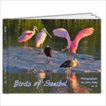 Saniibel 3B1 - 11 x 8.5 Photo Book(20 pages)