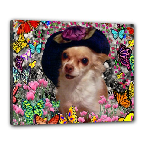 Chi Chi In Butterflies, Chihuahua Dog In Cute Hat Canvas 20  X 16  by DianeClancy