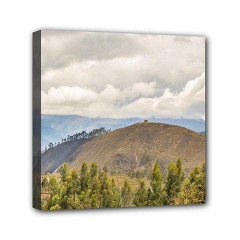 Ecuadorian Landscape At Chimborazo Province Mini Canvas 6  X 6  by dflcprints