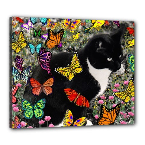 Freckles In Butterflies I, Black White Tux Cat Canvas 24  X 20  by DianeClancy