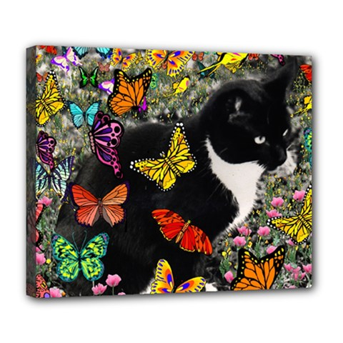 Freckles In Butterflies I, Black White Tux Cat Deluxe Canvas 24  X 20   by DianeClancy