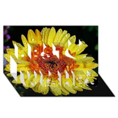 Yellow Flower Close Up Best Wish 3d Greeting Card (8x4)  by MichaelMoriartyPhotography