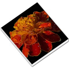 Marigold On Black Small Memo Pads by MichaelMoriartyPhotography