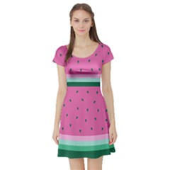 Watermelon Short Sleeve Skater Dress by olgart