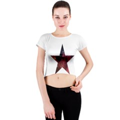 Star Crew Neck Crop Top by itsybitsypeakspider