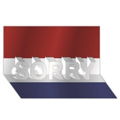 Flag Of Netherlands SORRY 3D Greeting Card (8x4) by artpics