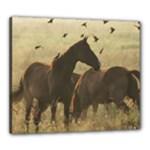 Horses Canvas 24  x 20  (Framed)